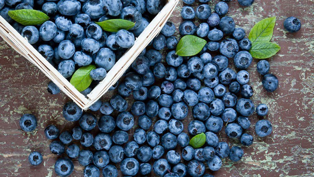 blueberries-in-basket-1024x576